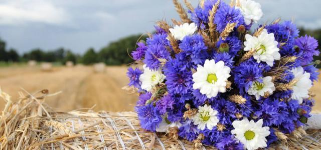 Organizza il tuo matrimonio in un agriturismo vicino Roma, scopri il fascino di sposarsi in campagna!