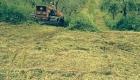Preparazione del terreno per la raccolta delle olive alla Tenuta Merlano
